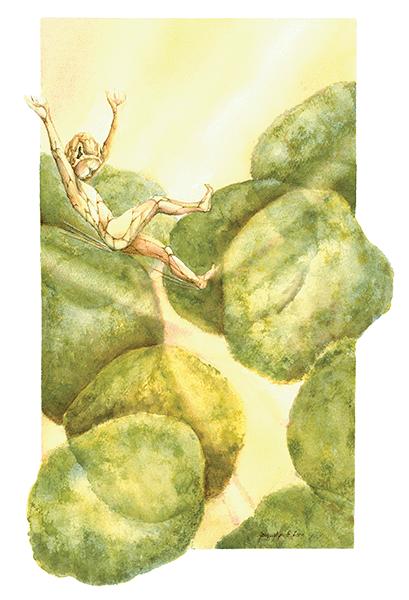 Khoros-Sylvan Elf in spongey mesophyl leaf cells