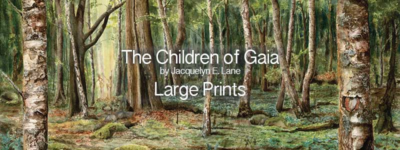 CoG-A3-Large-Prints-Title