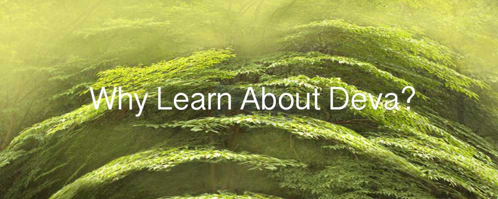 Why Learn About Deva?