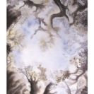 Cloud Forest – Greeting Card