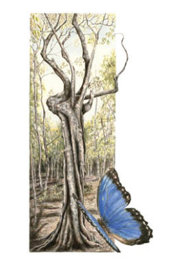Dry Forest Tree – Greeting Card