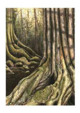 Two Trees – Greeting Card