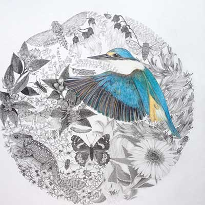 Kingfisher by Karyn Roberts NZ Artist