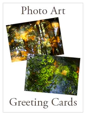 Photo Art Greeting Cards